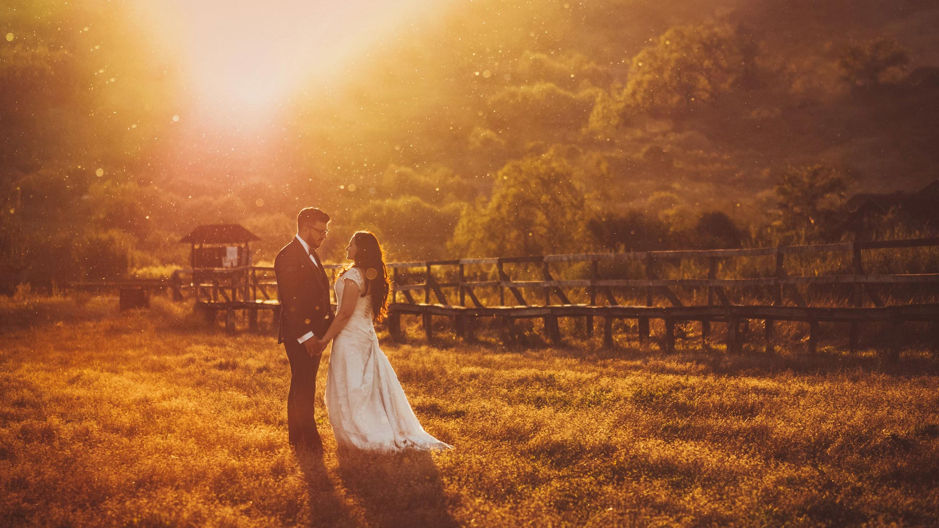 contre jour wedding photo